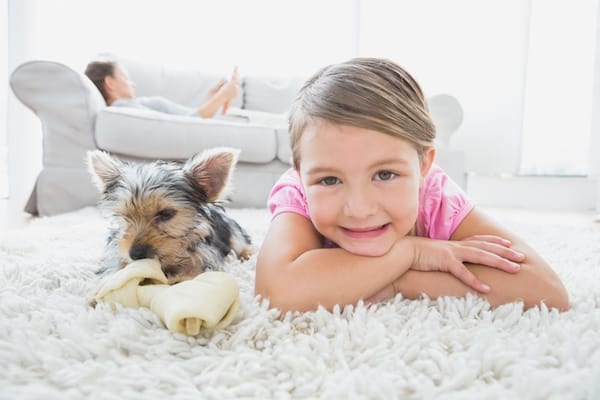 How Often Should You Deep Clean Your Carpets